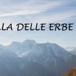 LA-SIBILLA-DELLE-ERBE-1-1-800x348